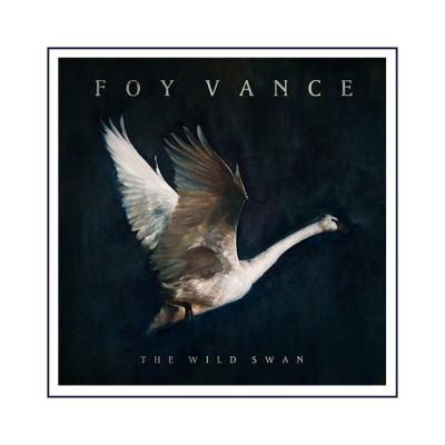 Foy Vance - Wild Swan Art Print